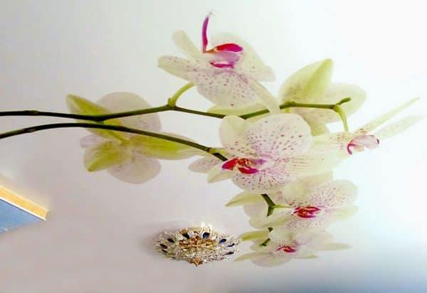 натяжной потолок с орхидеей