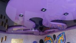 декоративные натяжные потолки